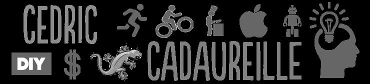 Cédric Cadaureille